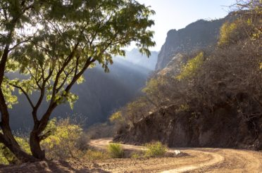 Northern Mexico and the Copper Canyon