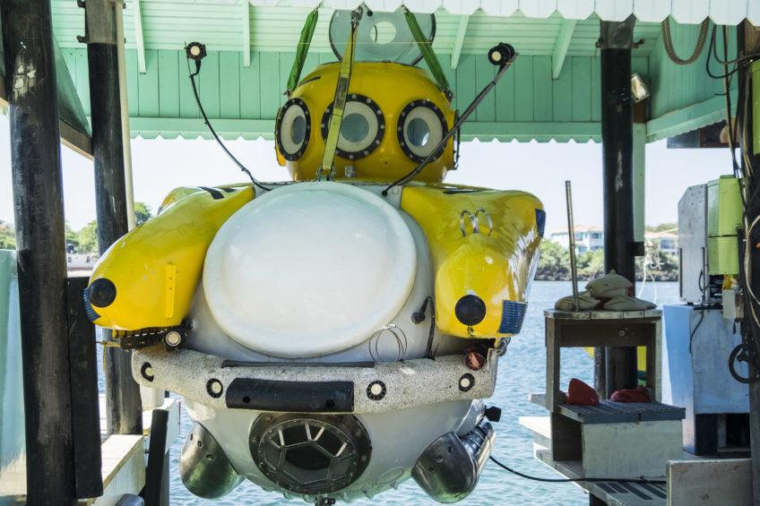 去往深渊的最深处 – 潜入加勒比海600米深的海底